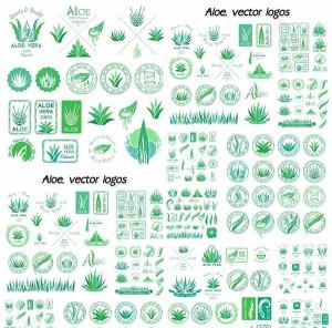 1450317500_aloe-vector-logos